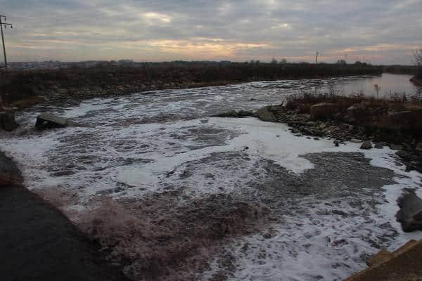 Ergene Nehri zehir saçıyor